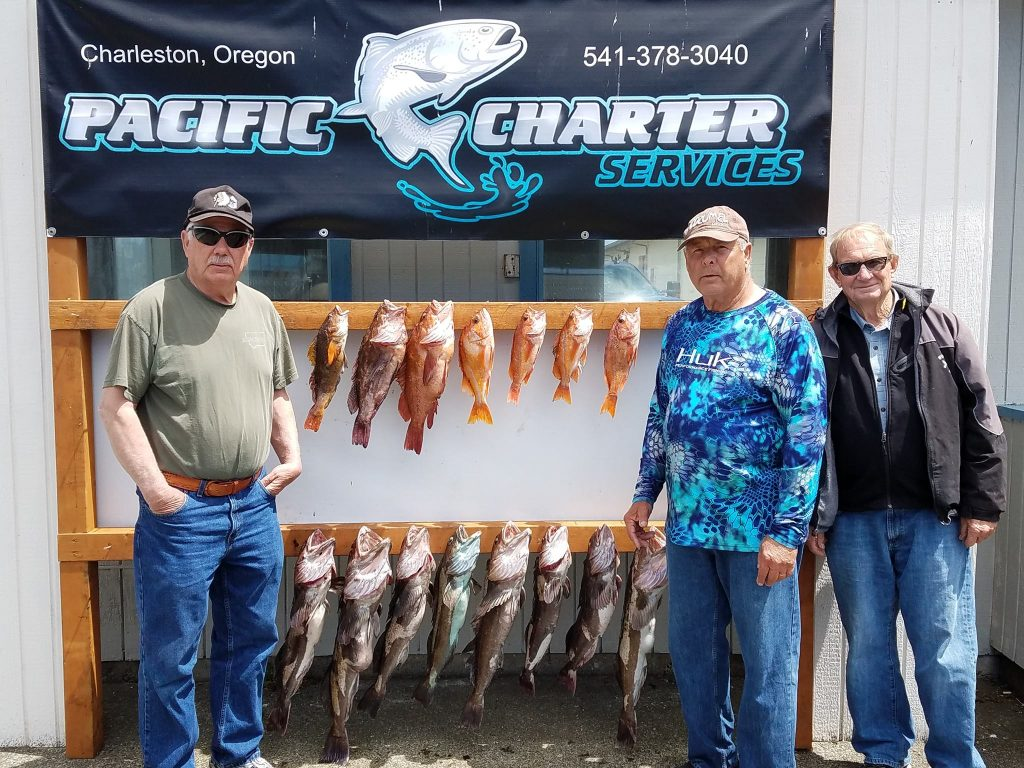Fish report coos bay limits of lings rockfish for Coos bay fishing charters