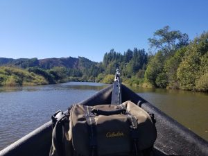 Guided River Trips