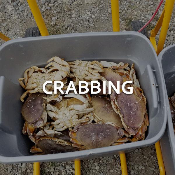 Crabbing Charter Trips