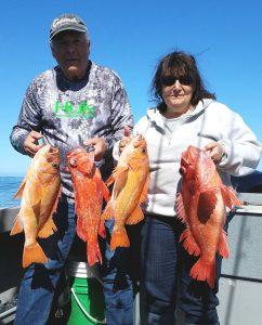Deep Water Produces Large Rockfish